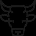 Vente de viande de boeuf en ligne avec livraison en ligne