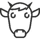 Vente en ligne de viande de veau de lait Limousin sous la mère