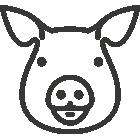 Vente de viande de porc en ligne, éleveurs locaux