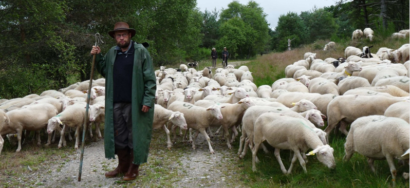 GAEC Revenons à nos moutons, producteurs d'agneau de plein air, Les Fines Bouches Rient